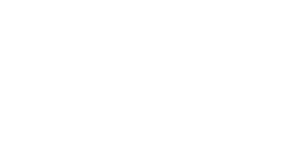 The repository, the legacy, the heritage